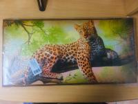 Нарды средние 500х250х36 цветной рисунок