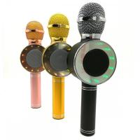 Микрофон WSTER WS-668 беспроводной (Bluetooth, динамики, USB)40